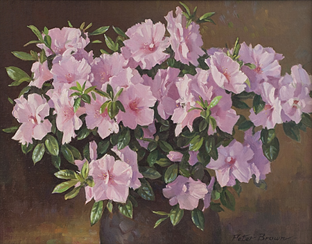 Fine Art by Peter Brown: Azaleas