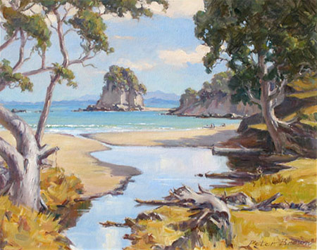 Fine Art by Peter Brown: Mangapaua Bay