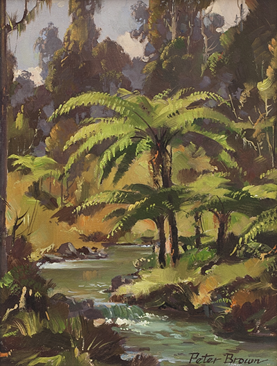 Fine Art by Peter Brown: Riwaka Forest